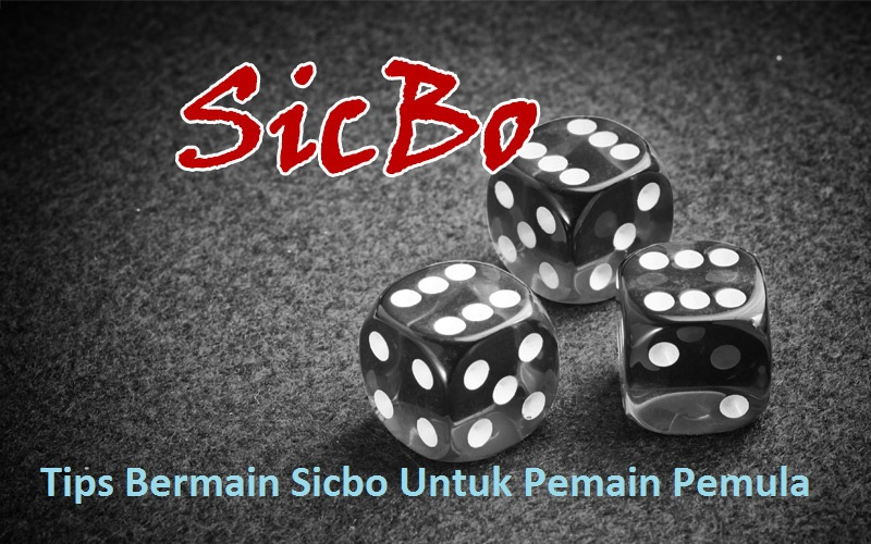 tips bermain sicbo